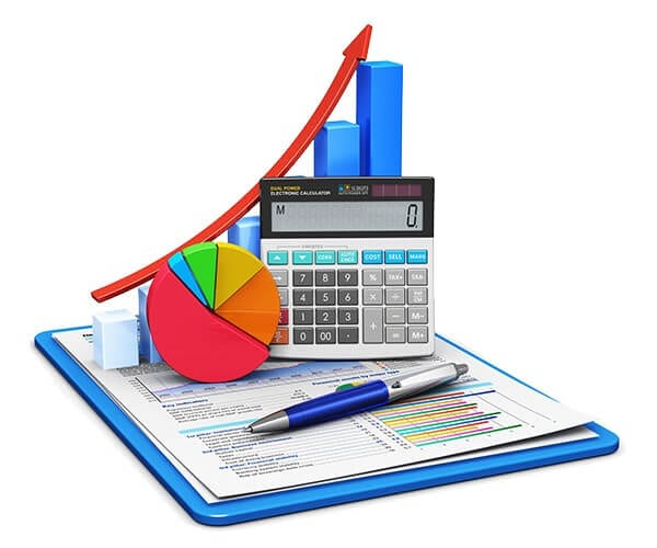 professional business accounting services